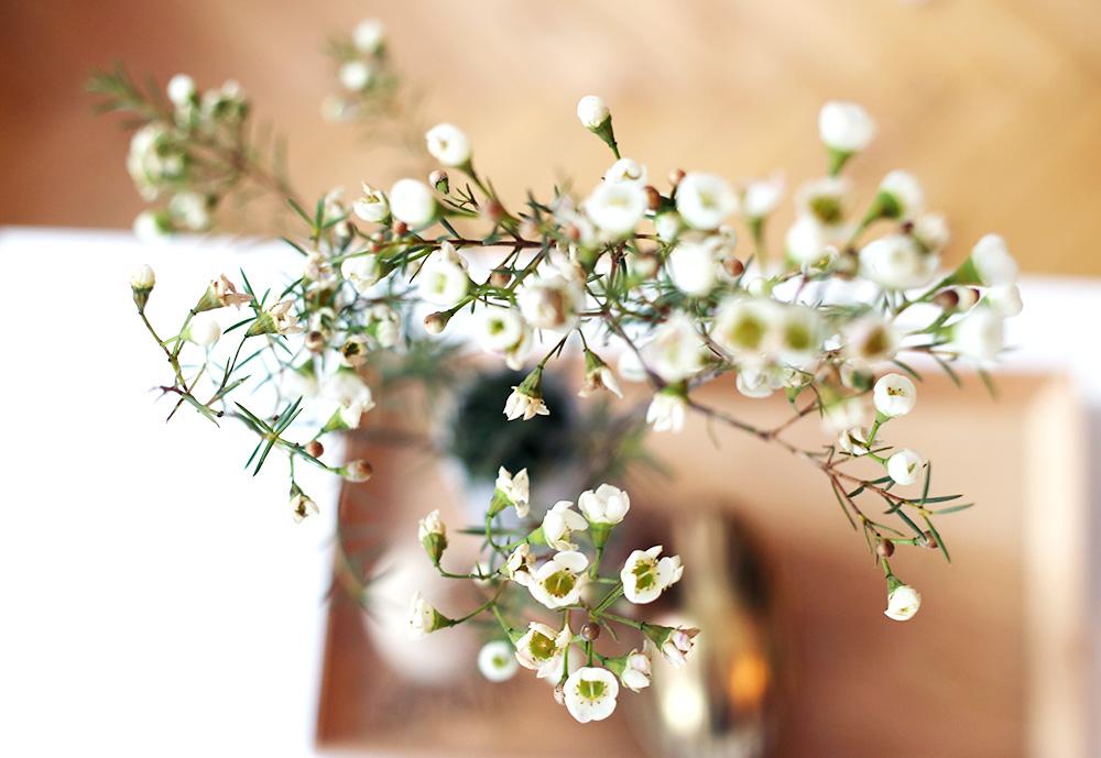 Berühmt Schnittblumen länger frisch halten: 6 Tipps #PS_43