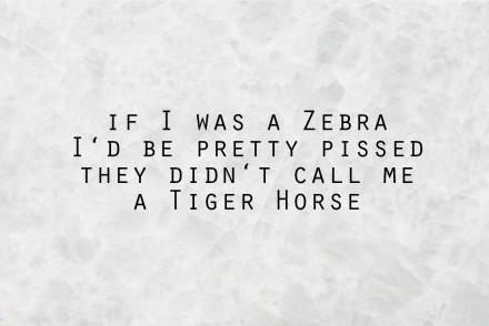 quote_zebra