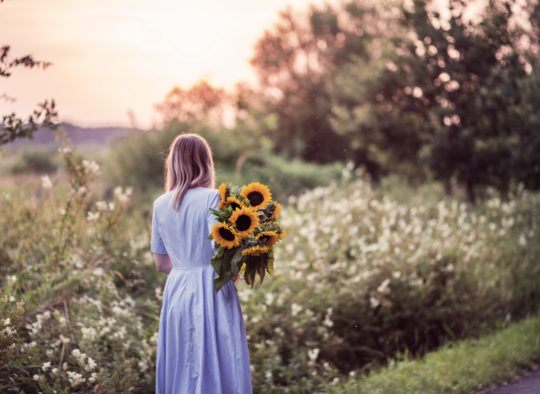 sonnenblumen-41b