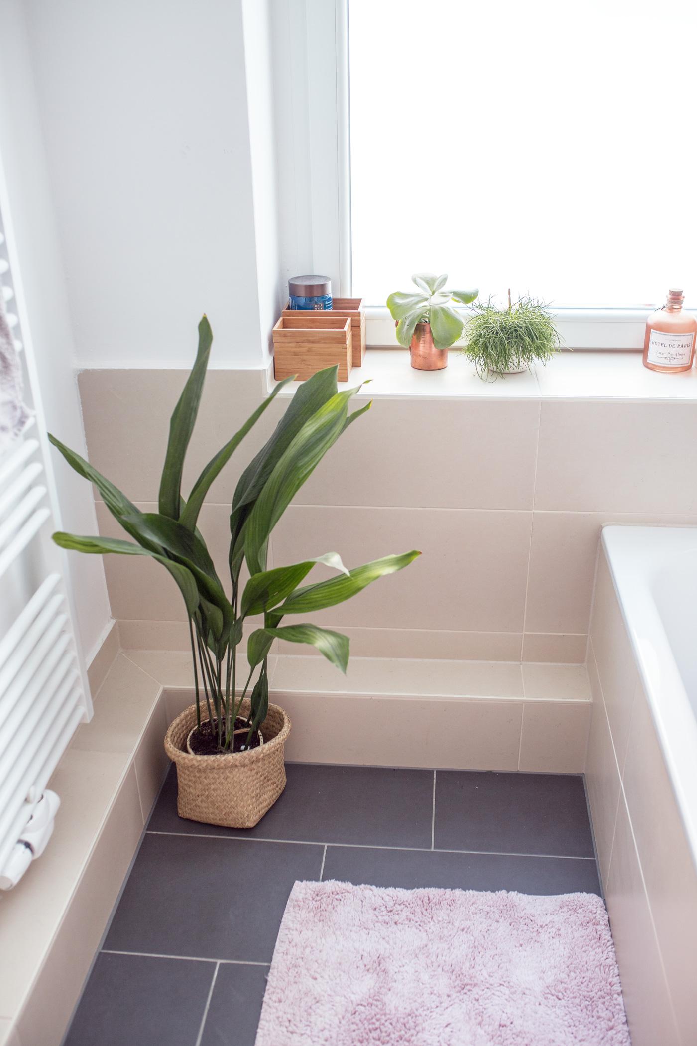 das neue badezimmer: einrichten und dekorieren